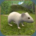 疯狂地鼠3d