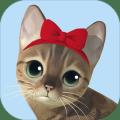 KittyCatResortIdleCat
